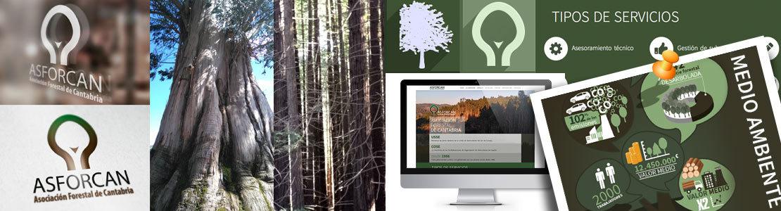 Asociación forestal de Cantabria
