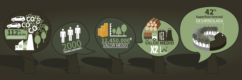 bosques-cantabria-sostenibilidad