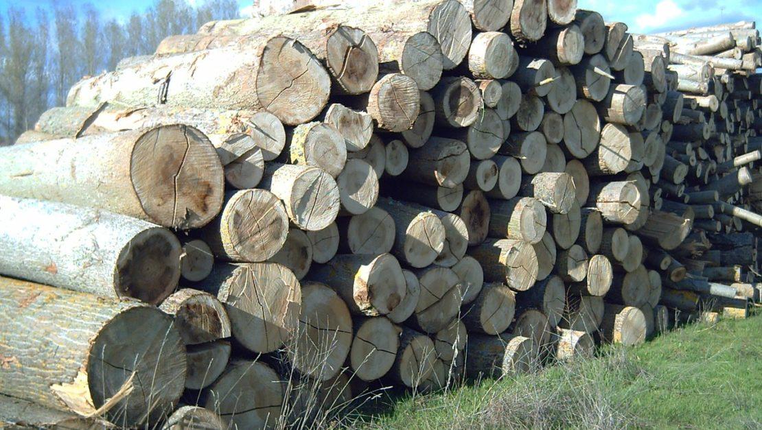 wood-76968_1280